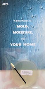 Viable Mold Test Kit